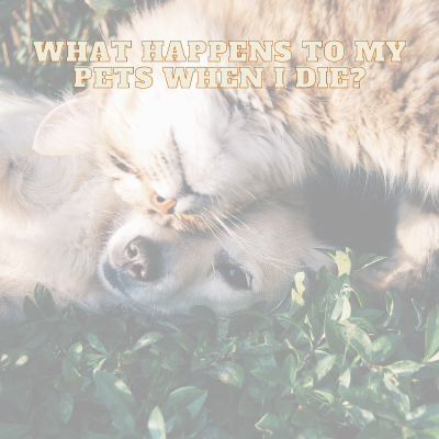 WHAT HAPPENS TO MY PETS WHEN I DIE
